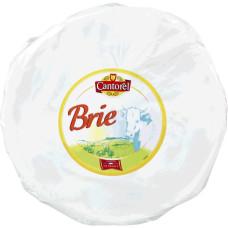 Branza Brie